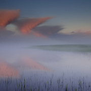 Sunrise through a fog bank over the Hayden River, Hayden Valley, Yellowstone National Park, WY