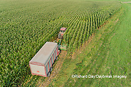63801-10619 Farmer cutting corn for silage-aerial Marion Co. IL