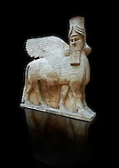 Stone statue of a winged bull. Reproduction from the facade of the throne room,  Inv AO 30043 from Dur Sharrukin the palace of Assyrian king Sargon II at Khorsabad, 713-706 BC.  Louvre Museum Room 4 , Paris .<br /> <br /> If you prefer to buy from our ALAMY PHOTO LIBRARY  Collection visit : https://www.alamy.com/portfolio/paul-williams-funkystock/ancient-assyria-antiquities.html  Refine search by adding background colour, place, subject, museum etc into the LOWER SEARCH WITHIN GALLERY box to <br /> <br /> Visit our ANCIENT ASSYRIAN PHOTO COLLECTIONS for more photos to download or buy as wall art prints https://funkystock.photoshelter.com/gallery-collection/Ancient-Assyrian-Art-Artefacts-Antiquities-Historic-Sites-Pictures-Images-of/C0000cjRqQyJjLag