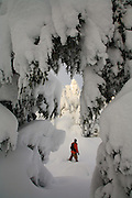 Snowshoeing in Turnagain Pass, Chugach National Forest, Alaska. (Model Released)