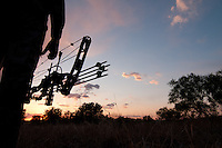 SILHOUETTE SHOT OF A BOWHUNTER STANDNG IN THE FIELD AT SUNSET.