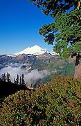 Morning light on Mount Baker, Mount Baker-Snoqualmie National Forest, Washington