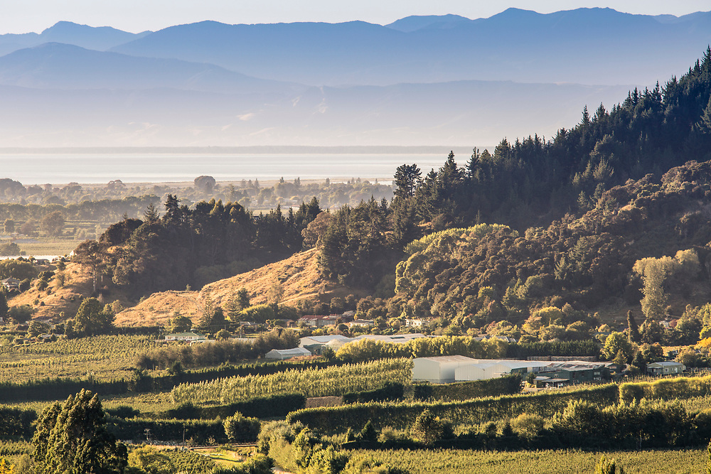 Riwaka Valley is famous for its horticulture industry, especially apples, pears, kiwifruit and hops and the Riwaka resurgence.