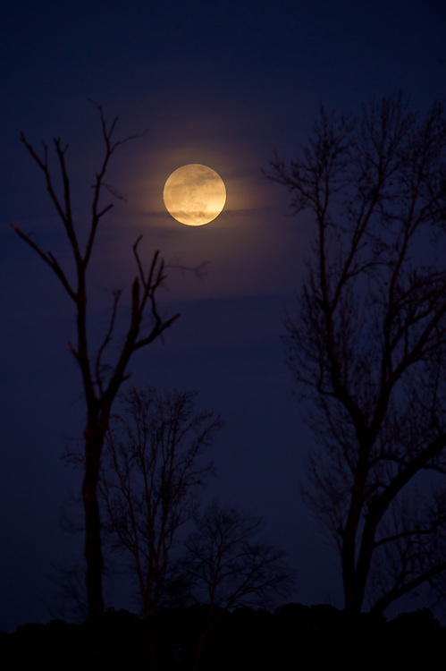 Dec. 12, 2012; Madison, GA, USA; Moonrise as seen from near Madison. Photo by Kevin Liles / kevindliles.com