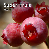 Super Foods   Pictures Photos Images & Fotos