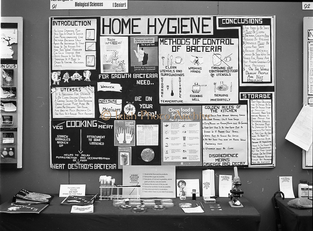 06/01/1978.01/06/1978.6th January 1978.The Aer Lingus Young Scientist of the Year Exhibition at the RDS, Dublin. ..Mary O'Hara's (from St Louis High School, Rathmines, Dublin) exhibit on Home Hygiene.