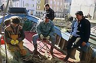 Pescatori a strascico nel porticciolo di Muggia.Trawl fishermen in the port of Muggia.