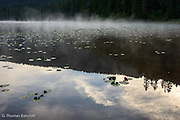 The mist was rising from the left side of the lake and drifting across the lake.  The morning clouds were wispy and delicate.  The tranquil setting inspired me for the day's hike.