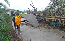 October 7, 2016 - Tallahassee, FL, USA - Rob Napier, 48, right, and his son Robbie,20, of Merritt Island survey an uprooted tree in a neighbors yard a casualty Thursday, October 7, 2016 of Hurricane Matthew as the Category 4 storm brushed the Florida east coast.Napier called a local radio station asking for help to remove limbs that blocked a street. (Credit Image: © Red Huber/TNS via ZUMA Wire)