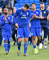 Football - 2018 / 2019 Premier League - Cardiff City vs. Crystal Palace<br /> <br /> Cardiff Sean Morrison of Cardiff in foreground look dejected as they applaud the crowd after the game after being relegated , at Cardiff City Stadium.<br /> <br /> COLORSPORT/WINSTON BYNORTH