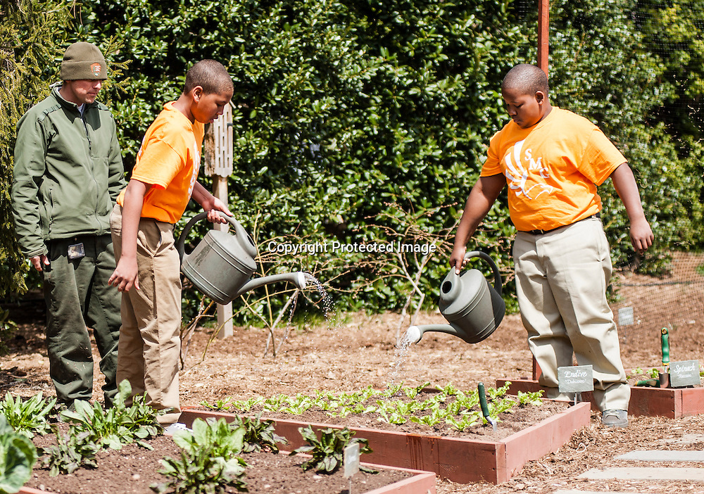 (L-R) Jalen Hurston and Jordan Wilson of Sarah Moore Greene Magnet Technology Academy School, Knox County, TN  plant during an event where they with fellow classmates and First Lady Michelle Obama planted the White House Kitchen Garden for the fifth year in a row at the White House on April 4, 2013 in Washington DC. Photo by Kris Connor