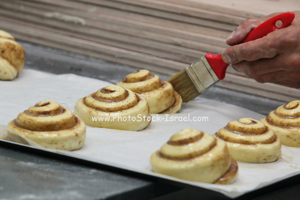 Cinnamon Roll pastry (Cinnamon snail) before baking