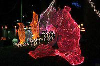 Ueno Park Illuminations