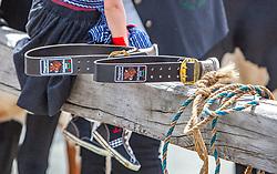 29.04.2018, Maishofen, AUT, XII Weltkongress Pinzgauer Rind, im Bild Feature// Feature during the XII Pinzgauer cattle World Congress in Maishofen, Austria on 2018/04/29. EXPA Pictures © 2018, PhotoCredit: EXPA/ Stefanie Oberhauser