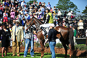 27 March 2010 : Paddy Young and SPY IN THE SKY come home to an exuberant crowd after winning the Gr. II Carolina Cup.