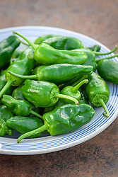 Chilli 'Padron' on a plate.