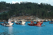 SPAIN, NORTH COAST, GALICIA the picturesque fishing harbor of El Grove on the Ria de Arosa, west of Pontevedra