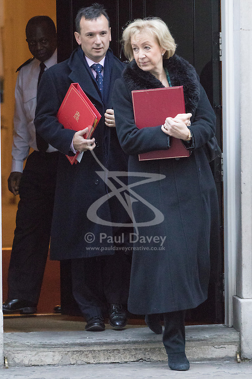 Downing Street, London, November 29th 2016. Environment, food and Rural Affairs Secretary Andrea Leadsom and Welsh Secretary Alun Cairns leave 10 Downing Street following the weekly cabinet meeting.
