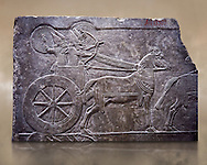 Stone relief sculptured panel of aa Assyrian Chariot. From the palace of Ashurnasirpal II  room VI/T1, Nineveh, third quarter of the 8th century BC. inv 19909  Louvre Museum , Paris .<br /> <br /> If you prefer to buy from our ALAMY PHOTO LIBRARY  Collection visit : https://www.alamy.com/portfolio/paul-williams-funkystock/ancient-assyria-antiquities.html  Refine search by adding background colour, place, subject, museum etc into the LOWER SEARCH WITHIN GALLERY box to <br /> <br /> Visit our ANCIENT WORLD PHOTO COLLECTIONS for more photos to download or buy as wall art prints https://funkystock.photoshelter.com/gallery-collection/Ancient-World-Art-Antiquities-Historic-Sites-Pictures-Images-of/C00006u26yqSkDOM