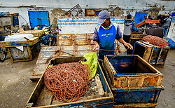A fisherman repairing a line at the harbour in Essaouira, Morocco<br /> <br /> (c) Andrew Wilson | Edinburgh Elite media
