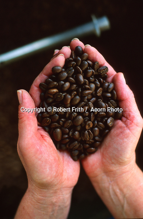 Naked Bean - hands holding roasted coffee beans