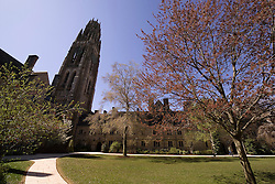 Yale University Campus, Harkness Tower and the Branford College Quad in April