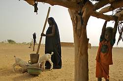 Zeina Waled Dossane pounds millet in the  village of Intedeyne March 15, 2007.   the challenge to educate children in Mali still exists and particularly for girls. Female literacy rates never reach even 50 percent of male literacy rates. Mali has the highest percentage of people living below the poverty line in any country in the world. Ninety percent of Malians survive on less than two dollars a day.