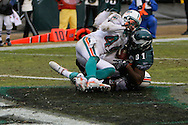 PHILADELPHIA - NOVEMBER 18: Jason Avant #81 of The Philadelphia Eagles successfully gets into the endzone during the game against the Miami Dolphins on November 18, 2007 at Lincoln Financial Field in Philadelphia, Pennsylvania.