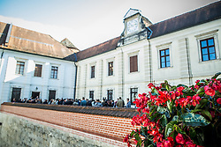 Castle Brezice when Primoz Kozmus, Olympic and World Champion in Hammer Throw ending his sports career, on October 23, 2015 in Grad Brezice, Slovenia. Photo by Vid Ponikvar / Sportida