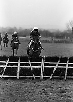 Punchestown Racecourse, Dublin, 03/01/1996 (Part of the Independent Newspapers Ireland/NLI Cillection).