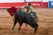 Spanish bullfighter Paco Urena thrusts his sword into bull at the Plaza de Toros bullring March 3, 2018 in San Miguel de Allende, Mexico.