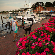 Roses line the harbor on the Pasquotank River in Elizabeth City, North Carolina. Nathan Lambrecht/Journal Communications