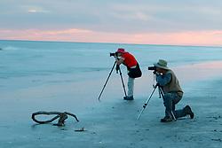 Photographers on beach at sunset on Gulf of Mexico, Galveston Island State Park, Galveston, Texas, USA