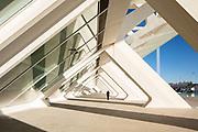 Ciutat de les Arts i les Ciencies   Santiago Calatrava   Valencia, Spain
