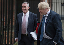 © Licensed to London News Pictures. 31/01/2017. London, UK. Foreign Secretary Boris Johnson (R) and Liam Fox, Secretary of State for International Trade and President of the Board of Trade, leave Downing Street after Cabinet before attending Parliament for the European Union withdrawal bill debate. Photo credit: Peter Macdiarmid/LNP