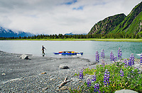 Man hauls kayak and gear up the feeder river to Bear Lake and Bear Glacier, Alaska.