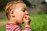 Young toddler of 18 months eats a snack of Bamba (peanut butter-flavored puffed corn) outdoors