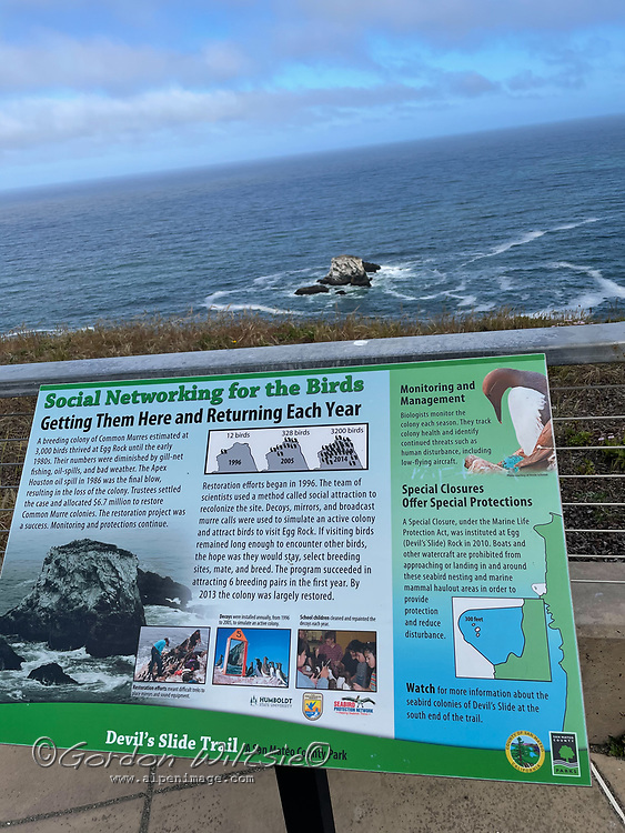 A information sign along an  abandoned section of California Highway 1 that winds through The Devils Slide south of San Francisco.