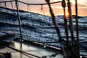 Clipper Round the World Yacht Race, Team Garmin racing in Rolex Sydney to Hobart 2015.