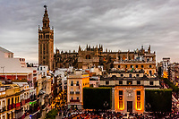 Plaza de San Francisco, Giralda Tower and Seville Cathedral at twilight, Seville, Andalusia, Spain.
