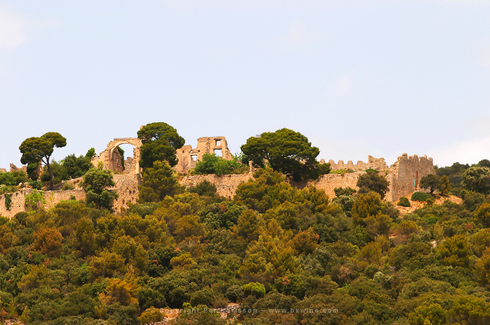 Domaine d'Aupilhac. Montpeyroux. Languedoc. The ruins of a chateau fortress. Chateau de Castellas ruin. France. Europe.