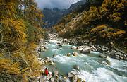Trekker in autumn en route Ghunsa, near Kangchenjunga, eastern Nepal.