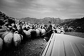PKK in Northern Iraq