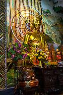 Gilded buddha statue, Linh Phuoc Pagoda, Da Lat, Vietnam, Southeast Asia