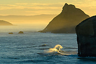 Oceania, New Zealand, Aotearoa, South Island, Otago Coast, Dunedin, Tunnel Beach, wave