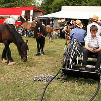 Adrian Spellman busy texting at the annual Spancilhill Horse Fair on Tuesday.<br /> Photograph by Yvonne Vaughan