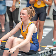 3:00 PM- Perry Group #32- Women?s 500m U16<br /> <br /> NZ Indoor Champs, raced at Avanti Drome, Cambridge, New Zealand, Saturday 23rd November 2019 © Copyright Steve McArthur / @rowingcelebration www.rowingcelebration.com