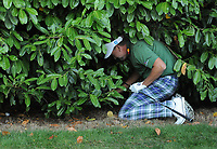 Golf - 2019 BMW PGA Championship - Thursday, First Round<br /> <br /> Ian Poulter of England tries to hit his ball after driving into the bushes, at the West Course, Wentworth Golf Club.<br /> <br /> COLORSPORT/ANDREW COWIE