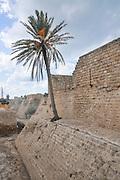 The Crusaders moat around Caesarea 10 m deep and 15 m wide. Caesarea, Israel