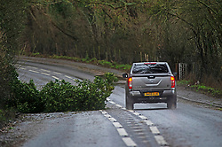 © Licensed to London News Pictures 27/12/2020.        Hildenborough, UK. A 4x4 vehicle driving round a tree in the road in Hildenborough, Kent. Storm Bella has battered Kent with gale force winds and heavy rain flooding roads and bringing down trees. Photo credit:Grant Falvey/LNP